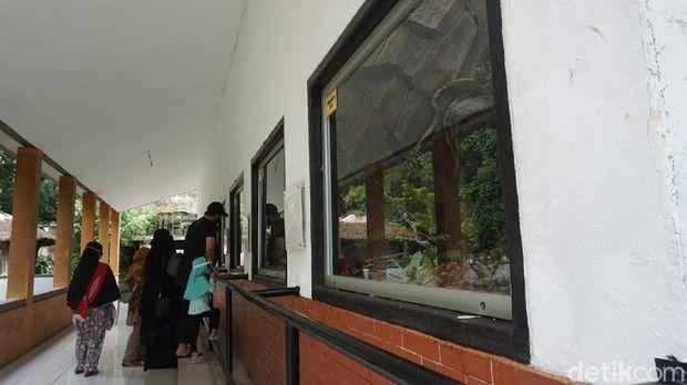 Suasana di Kebun Binatang Bandung hari Sabtu ini (26/12)