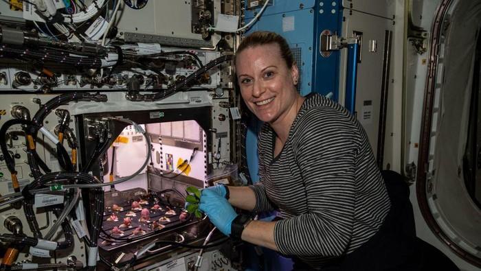 Astronaut NASA Kate Rubins panen lobak di luar angkasa