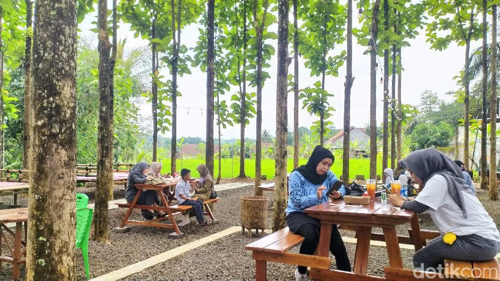 Bersantai Sambil Ngopi Seru di Tengah Kebun Jati Hits di Ciamis