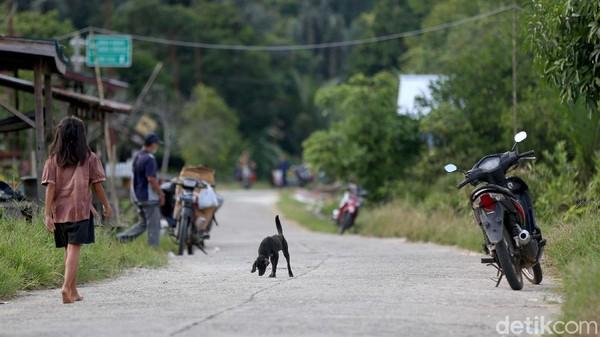 Memang cukup masuk akal penjelasan Bang Jeger. Kapuas Hulu merupakan kabupaten paling timur di Provinsi Kalimantan Barat. Kota Putussibau juga cukup jauh dari mana-mana.