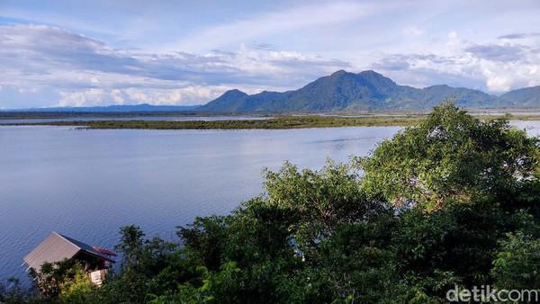 Sentarum merupakan danau terbesar di Kalimantan. Layaknya lautan, hamparan air terlihat memenuhi sela pepohonan dan hutan. (Rachman Haryanto/detikcom)