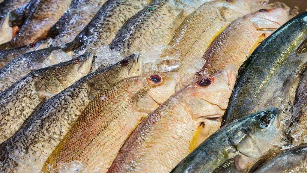 Covid-19 Mewabah di Pasar, Thailand Bikin Sertifikasi Produk Seafood