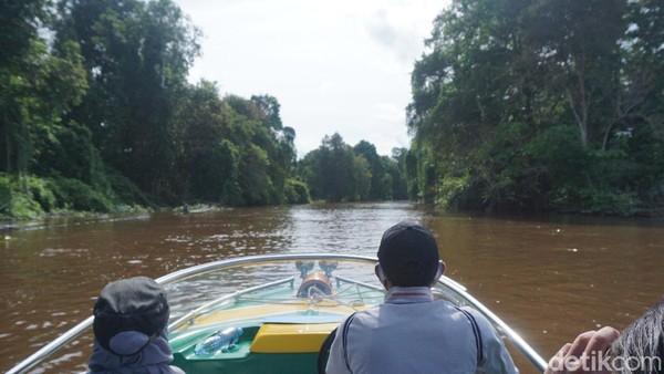 Traveler bisa menyusuri Sungai terpanjang di Indonesia, sungai kapuas. Pemandangannya masih asri dan hijau. (Wahyu Setyo Widodo/detikTravel)
