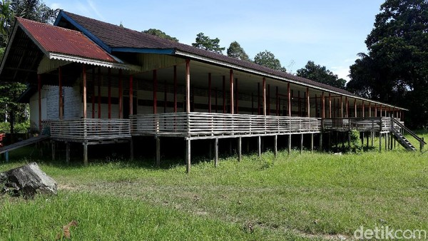 Rumah Betang yang ada disana juga dibiarkan terbengkalai begitu saja. Padahal, potensi wisata alam di Danau Buak ini terbilang sangat berpotensi karena lokasinya yang tak terlalu jauh dari pusat kota.