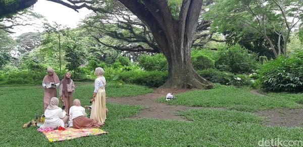 Sangat rindang dan indah, wisatawan biasanya datang untuk piknik dan berfoto. (Bonauli/detikcom)