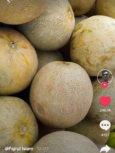Modal Melon di Pasar, Pria Ini Berhasil Jual Foto Rp 600 Ribu