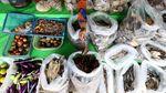 Foto: Bertahan Hidup dengan Jualan Ikan di Perbatasan