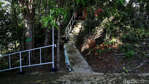 Sesampainya di pulau Sepandan, akan ada petugas taman nasional yang berjaga di loket depan dermaga. Untuk tiket masuk pengunjung dikenakan Rp 15 ribu-Rp 25 ribu. Kita bisa sepuasnya tracking ke puncak pulau tersebut.