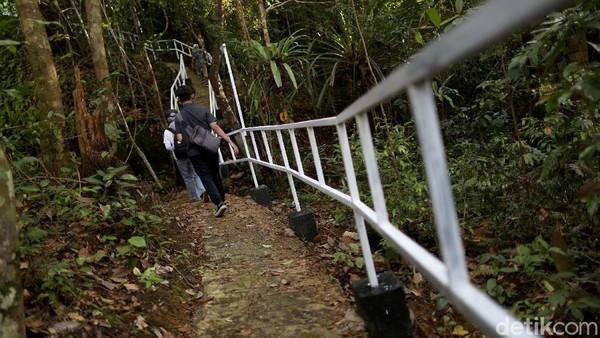 Aktivitas yang bisa kita lakukan di Pulau Sepandan itu yakni menaiki bukit di pulau tersebut dan ada sekitar lima spot pemberhentian yang menyugukan pemandangan danau Sentarum dari sisi yang berbeda-beda.