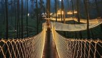 Jembatan itu sendiri khusus dibangun untuk memberikan pemandangan lanskap alam sekitarnya menjadi lebih luar biasa.Istimewa/dok. Bored Panda/Warman Wardhani.