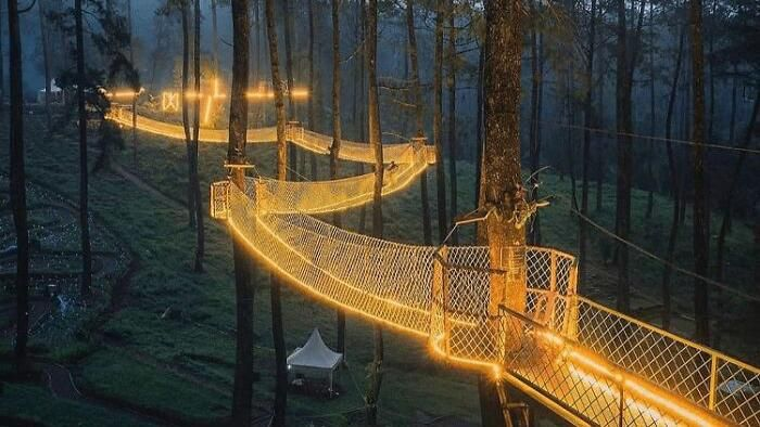 Hutan Anggrek Cikole dapat ditemukan di Lembang, Jawa Barat, Indonesia. Hutan ini menampilkan lebih dari 20.000 anggrek dengan taman bermain dan jembatan gantung.