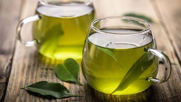 Green Tea Illustrations.  (Doc: Special)