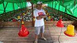 Potret Sukses Peternak Ayam yang Kini Jadi Jutawan