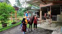 Wisatawan juga bisa berinteraksi langsung dengan satwa seperti kijang, burung dan kuda. Anak-anak diperbolehkan memberi makan kijang, berfoto dengan kakak tua dan berkeliling menaiki kuda. (Bima Bagaskara/detikcom)