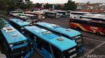 Melihat Aktivitas di Terminal Cicaheum Bandung
