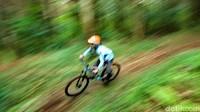 Trek tersebut merupakan pengembangan dari Palutungan bike park yang sempat di ujicoba beberapa bulan lalu.(Bima Bagaskara/detikcom)