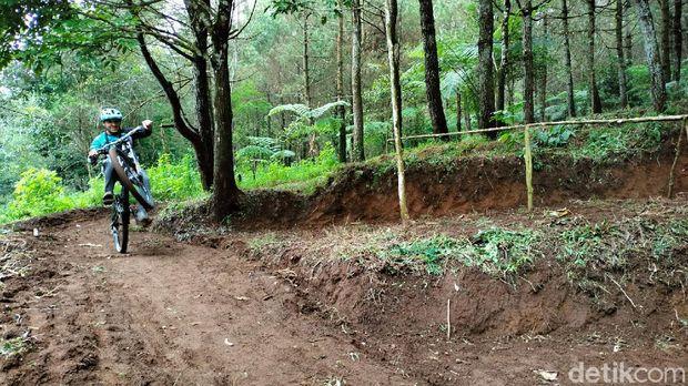 trek downhill Palutungan di Taman Nasional Gunung Ciremai