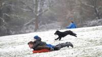 Membawa anak-anak untuk berseluncur di taman menjadi pilihan banyak warga di Inggris. Jacob King/PA via AP