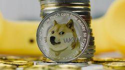Pecah Rekor Lagi! Harga Dogecoin Sudah Meroket 8.000% Tahun Ini