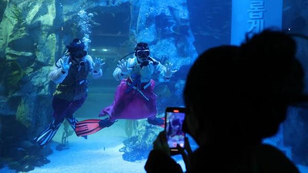 Akuarium tersebut memiliki tangki air seberat 2.200 ton yang merupakan terbesar di Korea Selatan yang dijuluki dengan The Ocean atau Samudra.
