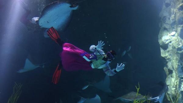 Penyelam mengenakan kostum tradisional HanBok dan berenang bersama ikan untuk merayakan Tahun Baru di Lotte World Aquarium, Seoul, Korea Selatan.