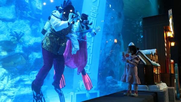 Di tengah masa pandemi corona, Lotte World Aquarium menyelenggarakan acara tersebut dua kali sehari pada setiap hari Sabtu, Minggu, dan hari libur nasional.