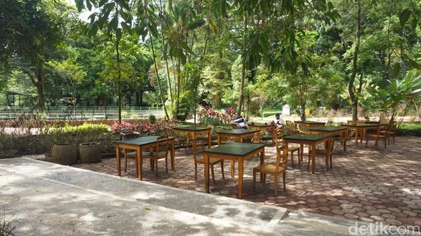 Ada pemandangan tak biasa saat berkunjung ke Kebun Binatang Bandung (Bazoga) saat memasuki tahun baru ini. Di sana, pengunjung berkesempatan untuk menikmati makanan di Simba Resto sambil melihat singa di kandang terbuka.