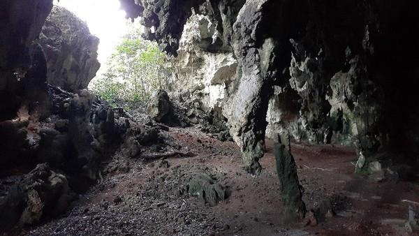 Inilah Gua Andarewa di Kampung Goras, Papua. Di dalam gua ini terdapat lukisan seperti alien yang masih misterius. (Hari Suroto/Istimewa)