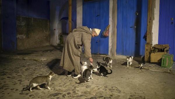 Terlepas dari momok pandemi, yang telah menewaskan lebih dari 7.000 orang di Maroko dan menekan ekonomi, penutupan Chefchaouen telah membawa sedikit kelonggaran yang tak terduga.