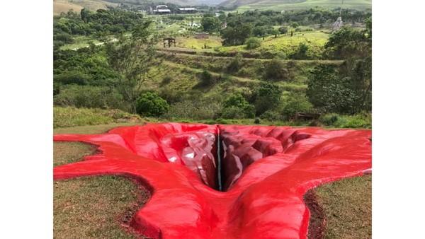 Memiliki panjang 33 meter, karya seni ini dibuat oleh seniman visual Juliana Notari.Ukuran lebar patung vagina raksasa ini yakni 16 meter dan kedalamannya sendiri mencapai 6 meter. Ada makna terkait pembangunan instalasi seni ini.