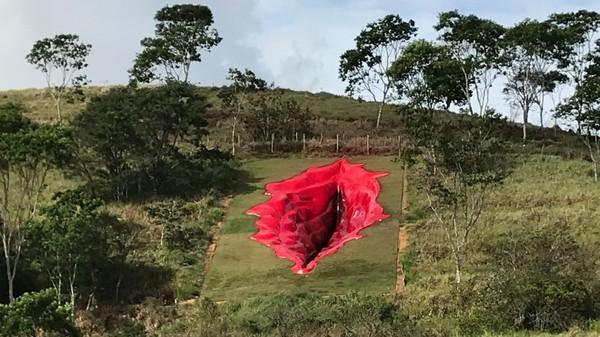Patung vagina raksasa ini memicu pertanyaan problematisasi gender. Tak butuh waktu lama, unggahan Notari di Facebook langsung mendapat beragam komentar dari warga Brasil dan hingga senin lalu, sudah 25.000 komentar menghiasi unggahannya.
