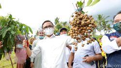 Tingkatkan Ketahanan Pangan, Bupati Anas Dorong Warga Manfaatkan Pekarangan