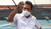 Trenggono: Ekspor Benih Lobster Sementara Saya Hentikan