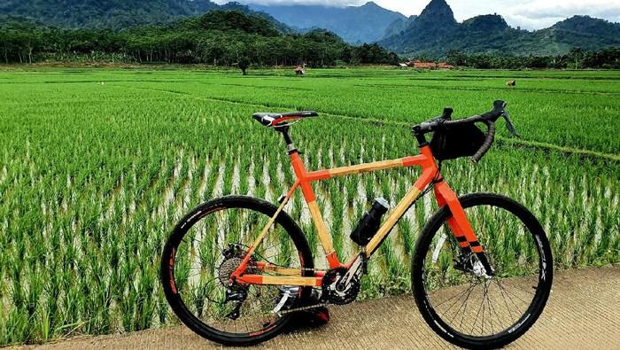 Bikin Sepeda dari Bambu, Why Not?