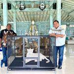 Jumpa Ketua Harian PB PON, Bamsoet: Papua Sudah Bersiap Sambut Atlet