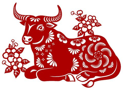 Celebrate the Year of the Ox with the red colored paper cut, and the ox is the Chinese Zodiac sign for the Chinese New Year 2021
