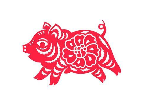 shio babi di tahun 2021