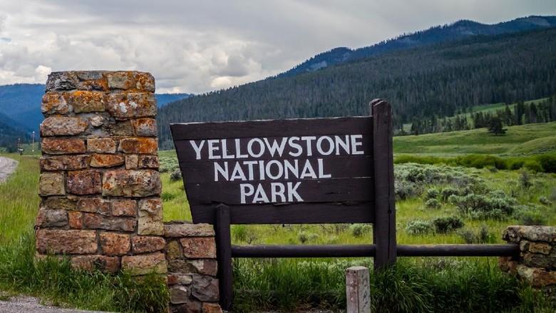 Taman Nasional Yellowstone