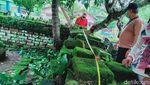 Temuan Makam Kuno Berpagar Bata Jumbo di Klaten