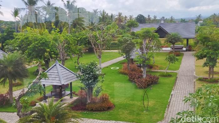 Ada Kafe Seluas 2 Hektar di Banyuwangi Terluas di Indonesia