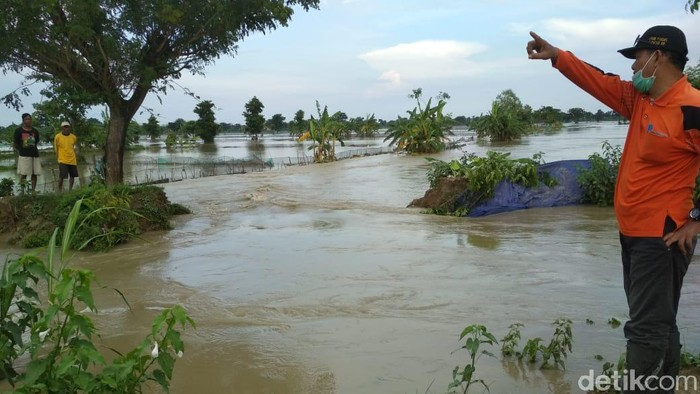 Hujan Deras Lebih 4 Jam, Tanggul Sungai di Lamongan Jebol