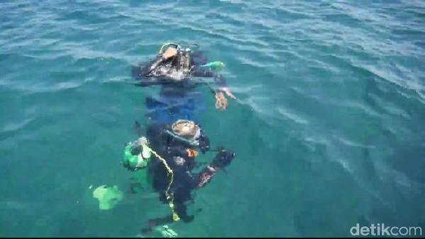 Pengunjung bisa memulai diving dengan menyusur hamparan terumbu karang seluas 3,5 hektar yang terbagi dalam dua spot. Kamu bisa bermain dengan ikan nemo yang jadi satwa endemik alam bawah laut Pantai Bohay(M Rofiq/detikcom)