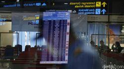 AP II Bikin Super App Buat Penumpang Bandara, Ini Deretan Fiturnya