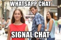 meme signal whatsapp