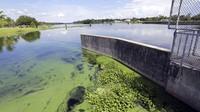 Tak Cuma di Kyoto, Sepertiga Sungai di Amerika Berubah Warna Sejak 1984