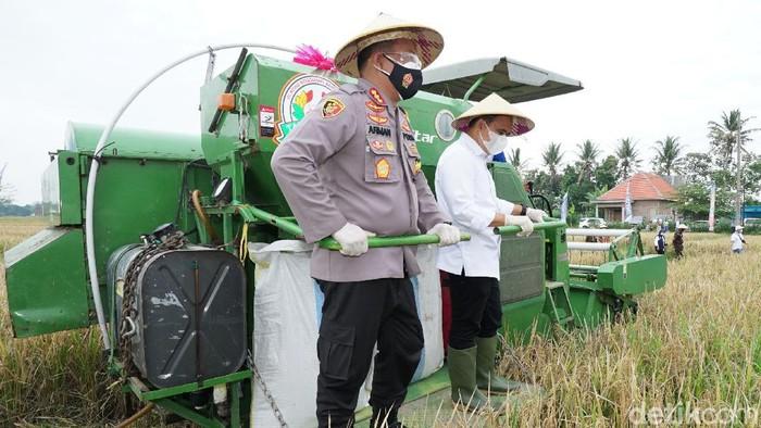 Jatah Alokasi Pupuk Subsidi di Banyuwangi Bertambah