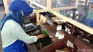 Memaknai Hari Anti Tembakau dari Sudut Pandang Pekerja Rokok RI