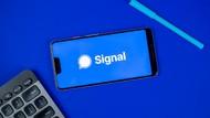 Nah Lho! Facebook Blokir Iklan Signal di Instagram