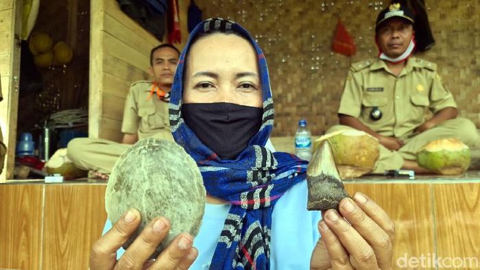 Warga menemukan sejumlah fosil gigi hiu di pantai Selatan Sukabumi