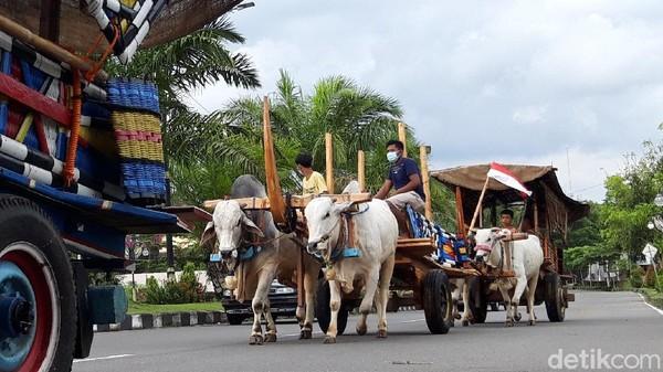 Gerobak-gerobak sapi tersebut dijalankan oleh Komunitas Peternak Sapi Logerit Mojosongo, Boyolali.